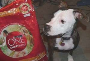 purina one smartblend coupons