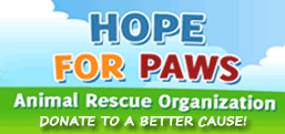 Donate to Hope for Paws!