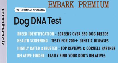 best dog dna test